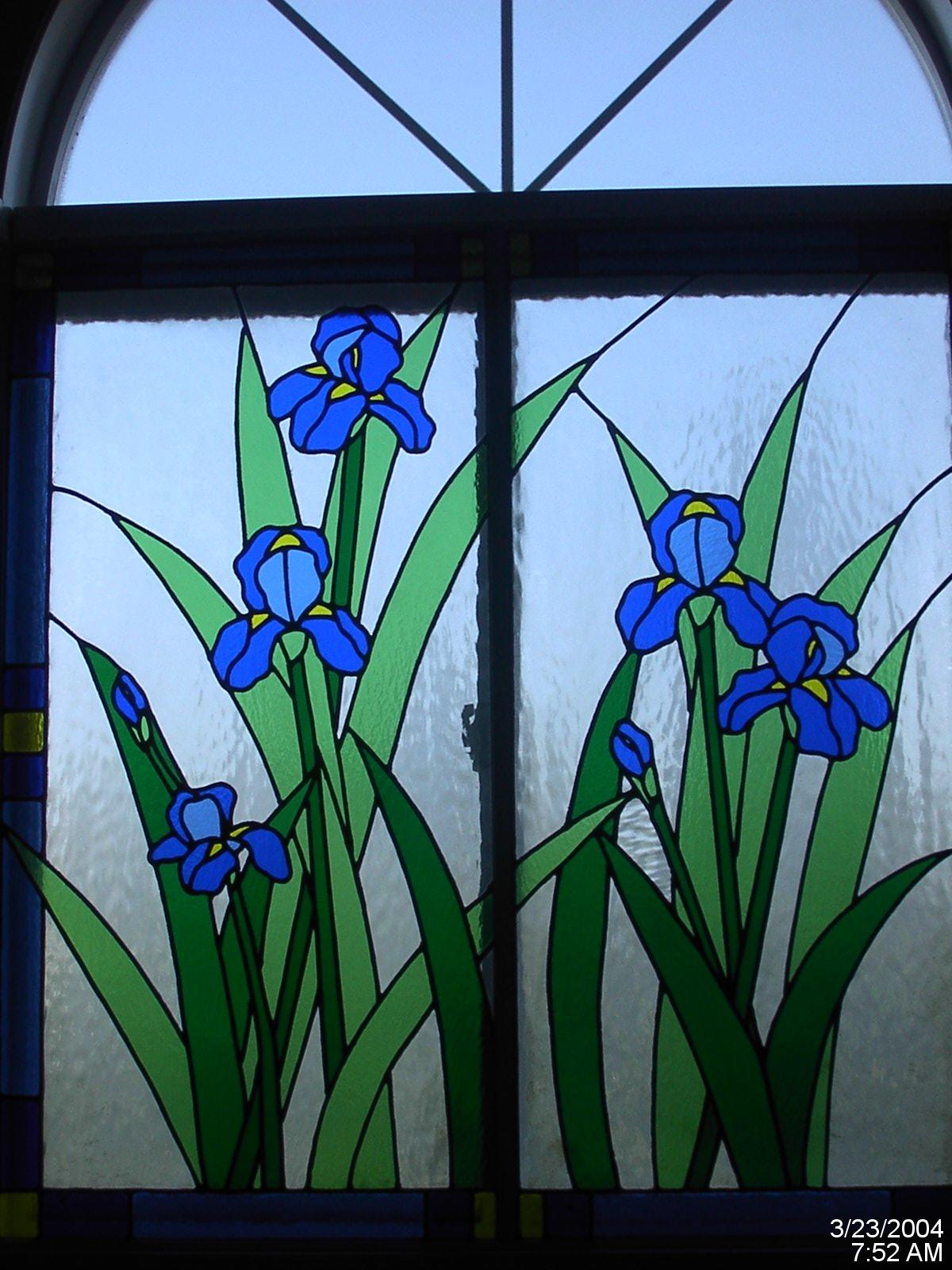 Color My View Iris Window